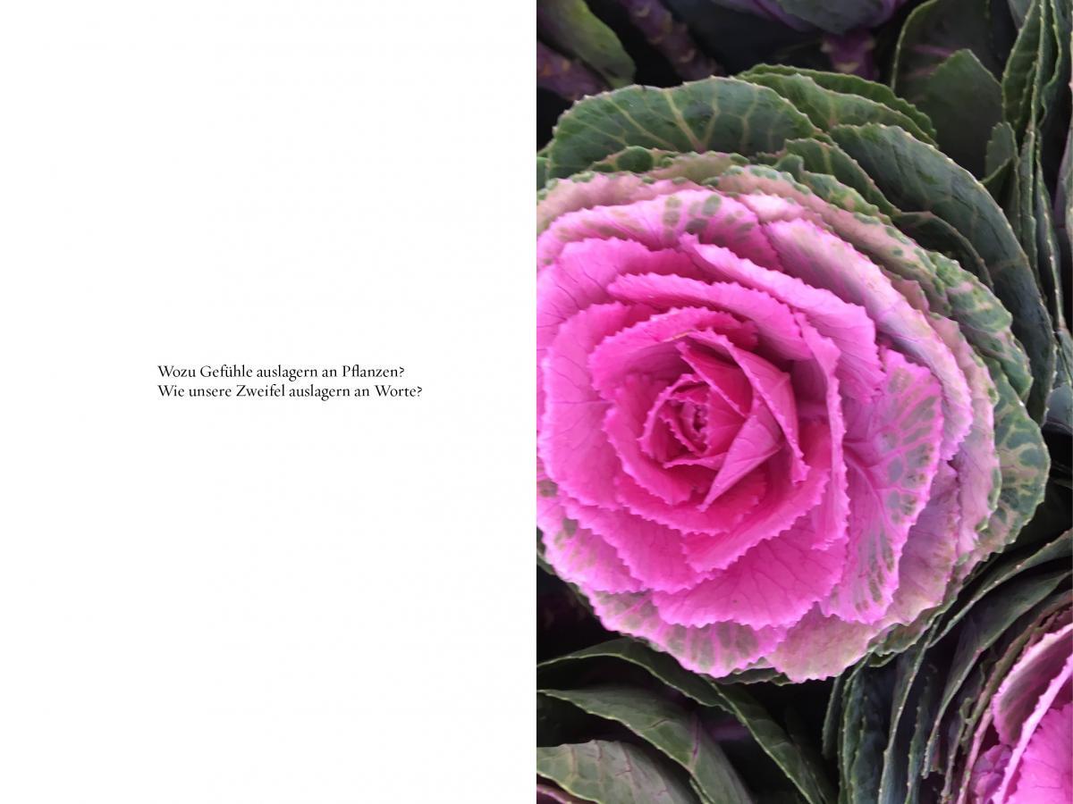 Blumen Sind geil_innen 1